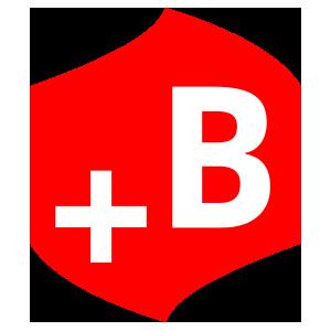 Logo plusbaufi